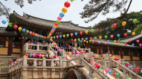 Two early birds' trip to Gyeongju (1)